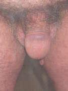 Photos de la bite de Pady, poilue